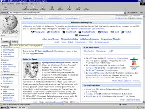 Im Internet Explorer klafft eine gefährliche Lücke.