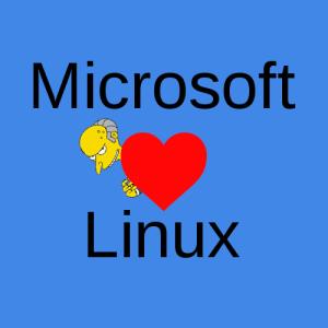Microsoft näher sich der OpenSource Welt an.